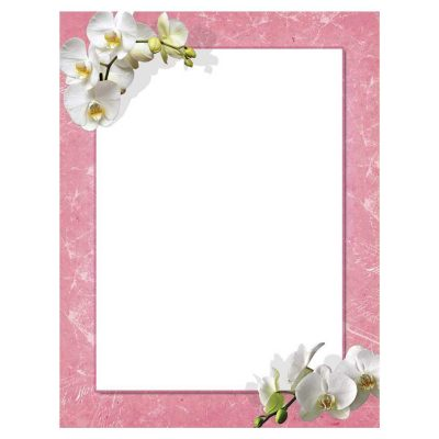 White Orchids Flowers Spring Floral Paper